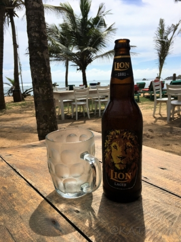 Lion - Photo by Andrius - October 2018