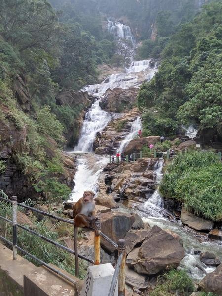 Ravana Waterfall Ella